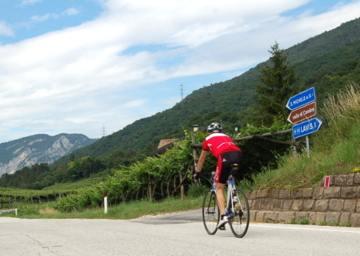 Ciclismo 5. Colline avisiane
