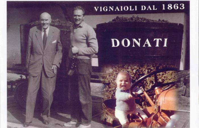 Donati Marco - G11