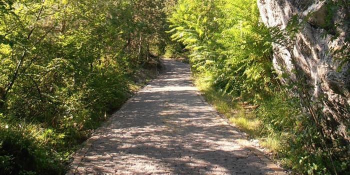 Strada delle Longhe - Ph. F. Anderlini