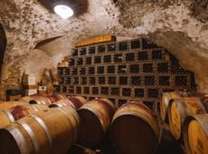 Wine & Music - esperienza in Cantina Dorigati