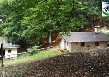 SAT 506 Monte-Bait dei Manzi-Aiseli. Foto F. Anderlini